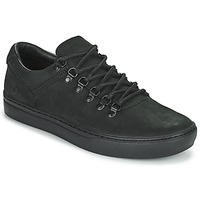 Shoes Men Low top trainers Timberland ADV 2.0 CUPSOLE ALPINE OX Black