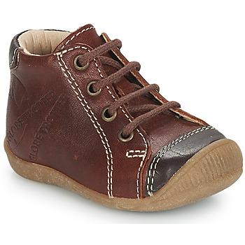 Shoes Boy Mid boots GBB NOE Vte / Fauve