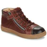 Shoes Boy High top trainers GBB NICO Brown