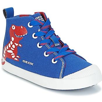Shoes Boy High top trainers Geox B KILWI B. F Blue / Red