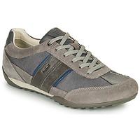 Shoes Men Low top trainers Geox U WELLS C Grey
