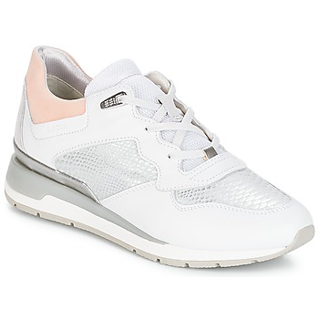 Shoes Women Low top trainers Geox D SHAHIRA B White / Silver