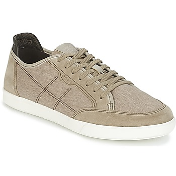 Shoes Men Low top trainers Geox U WALEE A Sable