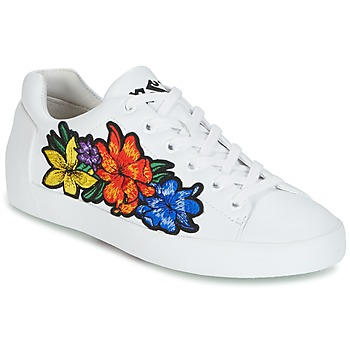Shoes Women Low top trainers Ash NEO White