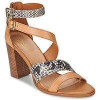 Shoes Women Sandals Carvela KISSY Brown