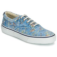Shoes Men Low top trainers Sperry Top-Sider STRIPER HAWAIIAN Blue