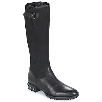 Shoes Women Boots Mam'Zelle XANE Black