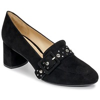 Shoes Women Court shoes Perlato HAREA Cam / Black