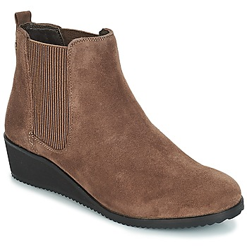 Shoes Women Mid boots Hush puppies COLETTE Brown