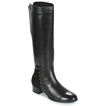 Shoes Women Boots André DORA Black