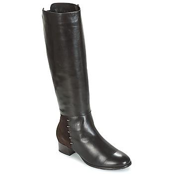 Shoes Women Boots André DORA Brown