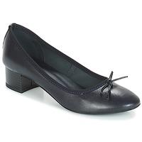 Shoes Women Ballerinas André POETESSE Marine