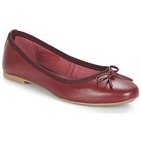 Shoes Women Ballerinas André PIETRA Bordeaux