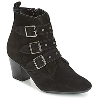 Shoes Women Ankle boots André TRACY Black