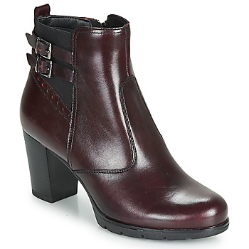 Shoes Women Ankle boots André CARACAL Bordeaux