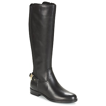 Shoes Women Boots André GABARIT Black