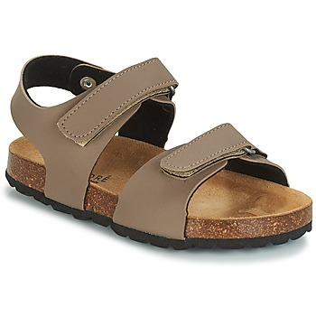 Shoes Boy Sandals André LES CRABES Taupe