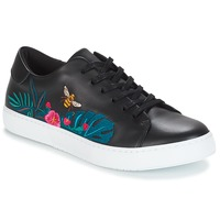 Shoes Women Low top trainers André HIBISCUS Black