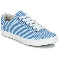 Shoes Women Low top trainers André SESAME Striped / Blue