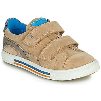 Shoes Boy Low top trainers Catimini PERRUCHE Beige