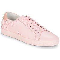 Shoes Women Low top trainers Ash DAZED Pink
