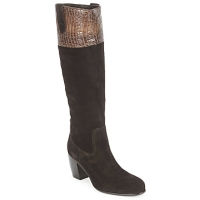 Shoes Women Boots C.Doux ENZO BOT Brown